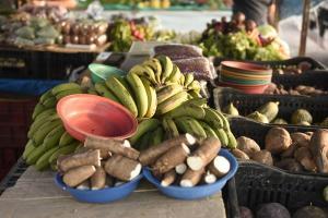 Boletim da Receita Estadual mostra que empresas que atuam com a venda de comida têm apresentado crescimento nas vendas mesmo com a crise