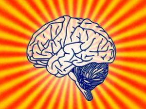 """O inconsciente se instala entre sujeito e objeto. E, com dispêndios e manhas, produz o novo, a capacidade de conviver com a dúvida e, com isso, transitar. Só os idiotas não têm dúvidas. Por isso, os objetos que """"se transmutam"""" é o que buscamos na análise"""