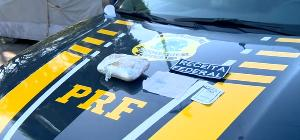 A moradora da Serra estava em um ônibus vindo de Minas Gerais. A polícia encontrou com ela meio quilo de cloridrato de cocaína