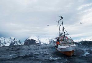 Kutter i reklamen av norsk laks i utlandet: - Må jobbe med færre markeder