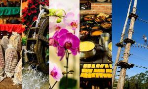 Segundo pesquisa da prefeitura, sem a visita dos turistas, além da redução do lucro, a produção também caiu mais de 75% em muitos empreendimentos