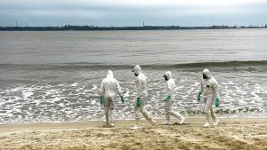 Segundo o boletim do Ibama, que relata vistoria do órgão no período de 15 a 21 de janeiro, são 42 pontos com óleo esparso no litoral capixaba e 81 localidades que já se encontram limpas