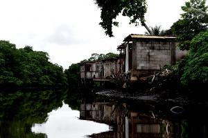 Área total de manguezal no ES atualmente é de 8.687 hectares, contra 8.808 hectares que existiam na década de 1970, uma redução de 1,4%