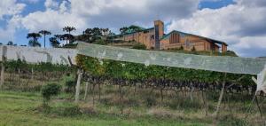 Situada entre altitudes que variam dos 900 aos 1.400 metros acima do nível do mar, essa surpreendente zona vitivinícola sequer existia no mapa 20 anos atrás