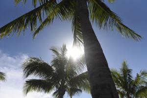 A previsão é do Instituto Climatempo. De acordo com o instituto, a grande frente fria que passou pelo Brasil no começo da semana, que trouxe chuva e aumento de nebulosidade, já começou a se afastar do país