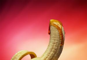 Kunstner om Pol og Kondomeriet: - De har kopiert mine ideer