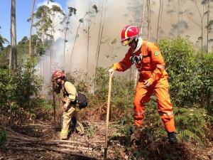 O fogo começou no início da tarde (28) em um local próximo à Rampa do Monjolo; as causas do incêndio ainda vão ser apuradas