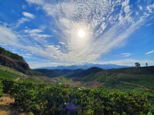 Agricultura e ciência caminham juntas em um panorama onde a espécie também conhecida como robusta é levada às montanhas do Espírito Santo