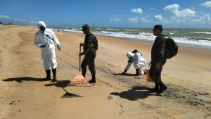 Material foi encontrado em Pontal do Ipiranga, em Linhares. O óleo que polui as praias do Nordeste do país há cerca de dois meses teve chegada ao Espírito Santo confirmada na sexta-feira