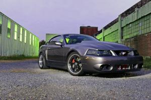 this 2003 ford mustang terminator cobra has traveled a long way - 2003 Ford Mustang Cobra Terminator