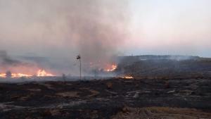 Segundo a Defesa Civil, áreas de aproximadamente 250 hectares de vegetação já foram consumidas pelo fogo que está fora de controle; Veja vídeo