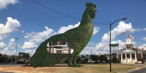 Small Town in Georgia Has Big Plans for an Enormous Chicken