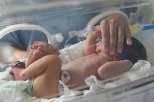 Decisão em caráter liminar visa garantir assistência aos recém-nascidos prematuros e às mães, uma vez que eles permanecem internados no hospital por vários dias ou meses. INSS tem 15 dias para acatar determinação