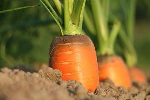 Carnes, frutas e hortaliças ficaram até 106% mais caras na Grande Vitória. Segundo especialistas, apesar da alta não ser permanente, o capixaba ainda vai sentir o impacto pelos próximos meses