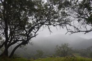 Pode chover em alguns momentos do dia em todas as regiões do Espírito Santo, de acordo com informações do Incaper