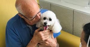 Rogério Muniz Carvalho passou por uma internação e a visita de sua poodle Nina foi fundamental para a melhora de seu estado de saúde. O Vitória Apart Hospital, por exemplo, permite alguns momentos do paciente internado com seu animal de estimação