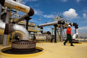 EnP aguarda desfecho de desinvestimentos da petroleira para tocar projetos no Norte do Estado, já que depende de um fornecedor. Empresa tem outros projetos em estudo para o Espírito Santo