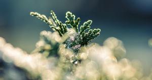 Bolha de ar gelado será responsável por 'acentuado resfriamento em diversos estados'; situação deve ser acompanhada de geada e até neve em alguns estados das regiões Sul e Sudeste