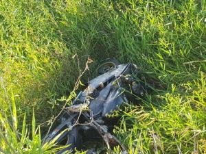 Segundo dados do Observatório da Segurança Pública da Secretaria do Espírito Santo, 741 pessoas morreram em acidentes em 2020