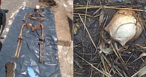Funcionário de limpeza e manutenção da rodovia foi quem encontrou os restos mortais e acionou a Polícia Militar