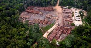 Presidente Jair Bolsonaro enviou carta aJoe Biden comprometendo-se a colocar fim ao desmatamento ilegal no Brasil até 2030, mas na realidade país vem falhando na fiscalização de crimes ambientais