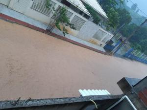 Os municípios de Alegre, Jerônimo Monteiro e Vargem Alta registraram diversos pontos de alagamentos. Também houve queda de árvores e poste