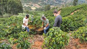 Reportagens feitas no Espírito Santo foram produzidas por uma equipe da Rede Gazeta, com imagens gravadas em Alegre, Dores do Rio Preto, Muqui, Afonso Cláudio e Venda Nova do Imigrante