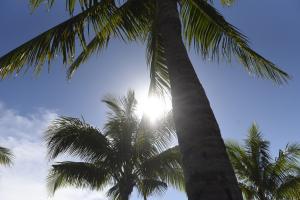 Climatempo aponta que cenário de nenhuma ou pouca chuva no Estado capixaba se estende pelo menos até a primeira semana de fevereiro