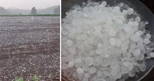 O Incaper havia alertado para a possibilidade do fenômeno ocorrer em algumas regiões do Estado por conta das condições climáticas existentes. Registro foi feito no interior da cidade de Santa Maria de Jetibá