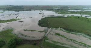 Segundo os produtores, há cerca de 10 anos a água escoava em um período de 30 dias, agora, as áreas têm ficado até oito meses alagadas