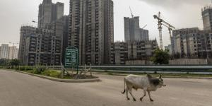 India's 'Ghost Towns' Saddle Middle Class With Debt—and Broken Dreams