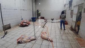 Idaf e PM encontraram diversas porções de carne bovina espalhadas pelo chão, sem qualquer cuidado de higiene e sanitário. Segundo a polícia, os produtos eram vendidos para empresas e pessoas físicas