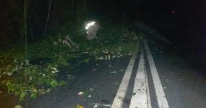De acordo com informações do governo do Estado, o município de Colatina, no Noroeste do ES, registrou o maior volume de chuva das últimas 24 horas: 49.04 mm