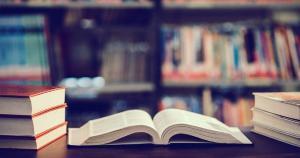 Tudo que posso saber é que a leitura e a literatura são o que são, no instante delas mesmas. E valem por si