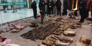 Virus Sparks Soul-Searching Over China's Wild Animal Trade