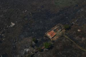 Desde o início do ano até o último domingo (11), 27% dos 15 milhões de hectares do Pantanal foram consumidos pelo fogo