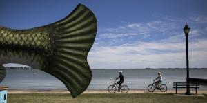 As Green Algae Forces Beaches to Close, Ohio Lake Offers Hope