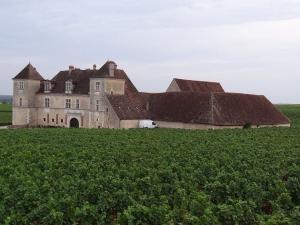 Enquanto a classificação dos grandes vinhos de Bordeaux considerou o preço e o status da propriedade, na Borgonha a definição se deu pela qualidade do solo