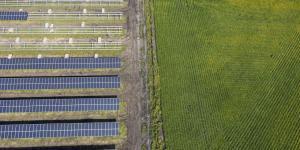 Struggling Farmers See Bright Spot in Solar