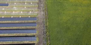 Struggling Farmers See Bright Spot in Solar
