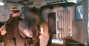 Maurício foi preso no último dia 9, em São Paulo; ele é o responsável por ferir uma grávida com chave de fenda durante um assalto que aconteceu em março, na Enseada do Suá, em Vitória