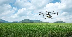 Agricultores do Espírito Santo estão inovando ao adotar práticas que favorecem o meio ambiente e reduzem o desperdício