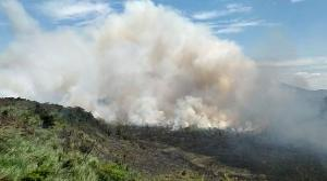 O fogo começou às margens da rodovia Audifax Barcelos e se espalhou rapidamente pelo matagal