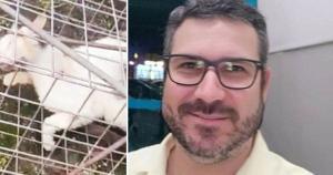 Victor Brandão Machado chegou a ficar preso, mas foi liberado depois de alguns dias e responde em liberdade. O Ministério Público requer que o denunciado seja condenado na Lei de Crimes Ambientais