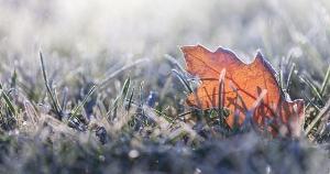 A madrugada desta quarta-feira (12) ainda registrou temperaturas baixas em outros municípios da região Serrana e do Caparaó capixaba: Iúna marcou 10,4 °C e Venda Nova do Imigrante registrou 10,1 °C