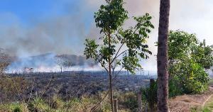 Corpo de Bombeiros atuou por mais de seis horas com o apoio da Defesa Civil do município para combater o fogo