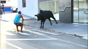As ruas do Centro do município tiveram que ser fechadas, causando trânsito. O animal, que estava assustado, chegou a entrar em um pátio de hospital. Após duas horas, o boi foi capturado