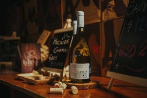 O MOVI é uma associação de pequenos vitivinicultores familiares com experiências variadas e muita diversidade na produção de seus vinhos, que traduzem o melhor do terroir