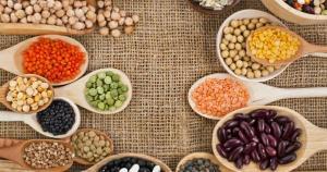 São inúmeras as pesquisas científicas que confirmam que uma dieta a base de vegetais e com reduzida ingestão de proteína animal é benéfica para o organismo