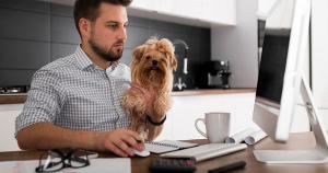 No final de maio, está programada a segunda edição da Pet Fair ES, em Vitória. O objetivo é mostrar as tendências e novidades do setor aos empreendedores do setor
